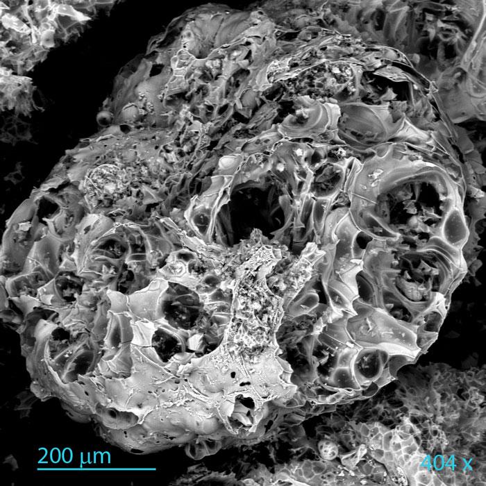 perlite espansa microscopio a scansione