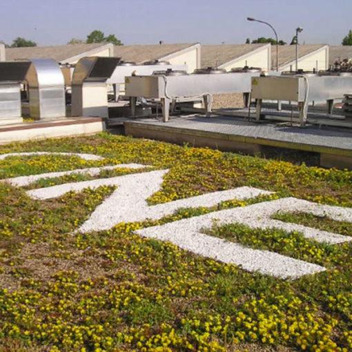 Tetto giardino copertura edificio uffici sistema per realizzazione giardini pensili Perliroof