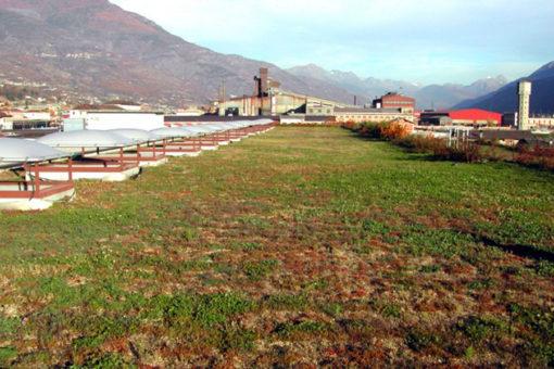 copertura con tetto giardino a sedum - centro commerciale - Aosta