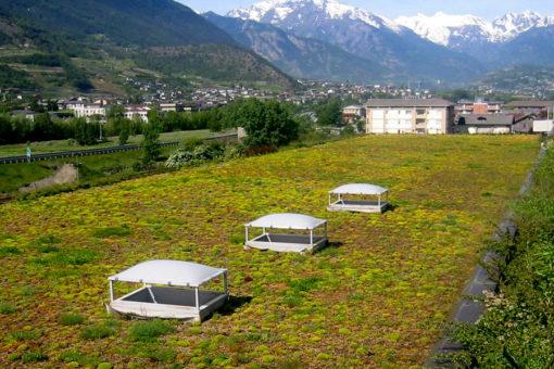 Tetto verde estensivo Perliroof a sedum - centro commerciale - Aosta