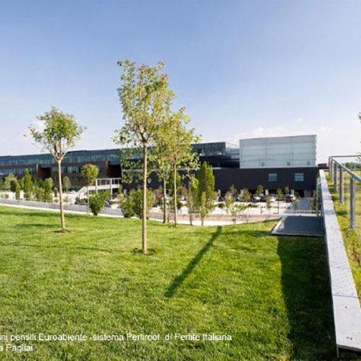 verde pensile intensivo a prato ed alberature realizzato con sistema Perliroof - headquarters Diesel