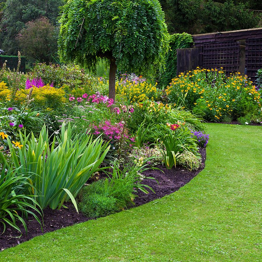 substrati di coltivazione e terricci per paesaggistica, verde intensivo ed estensivo, prato, arbusti e alberi