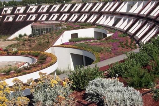 tetto verde estensivo Perliroof con erbacee perenni e piccoli arbusti - Centro benessere - hotel