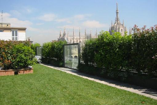 Copertura a verde pensile intensivo a prato - solarium palestra - Milano