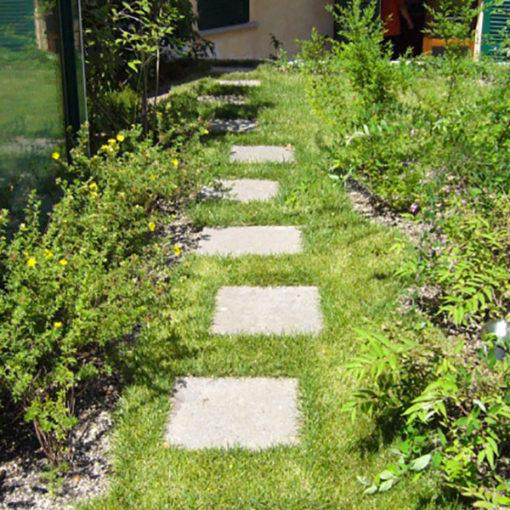 camminamento su tetto verde intensivo a prato, arbusti e piccoli alberi - tetto di abitazione privata - Milano