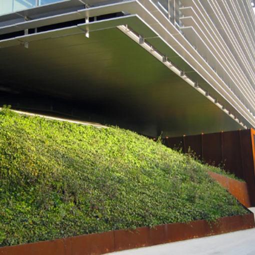 copertura verde a bassa manutenzione - vegetazione a rampicanti - centro direzionale - Milano