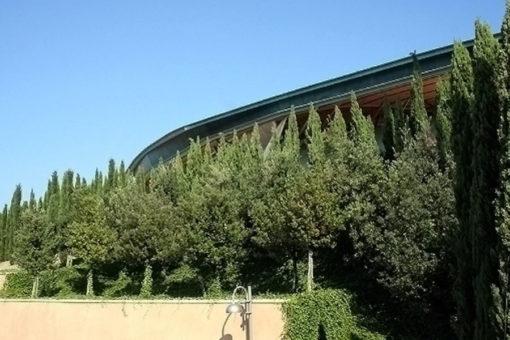 copertura verde intensivo con alberi di I grandezza - giardino inclinato presso Chiesa Padre Pio - Pietralcina