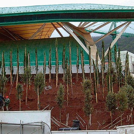 fase impianto e posa substrato di coltivazione - copertura verde intensivo con alberi di I grandezza - giardino inclinato presso Chiesa Padre Pio - Pietralcina