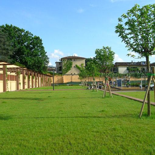 giardino pensile intensivo a prato e alberi - copertura di piazza pubblica - Lucca - sistema Perliroof
