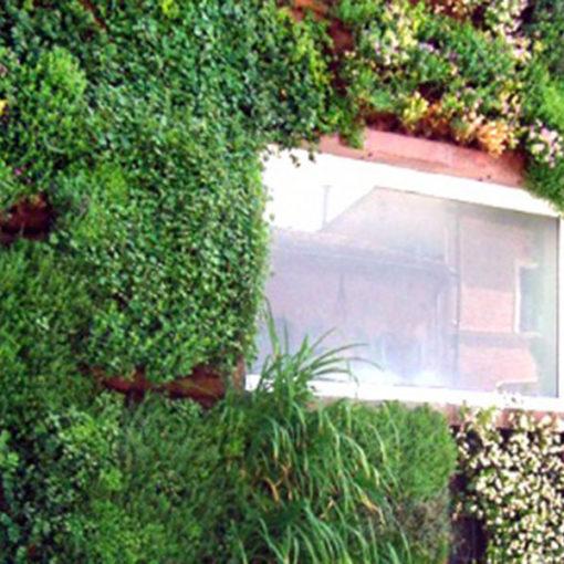 parete esterna inverdita con sistema per verde verticale Perliwall - vegetazione variegata