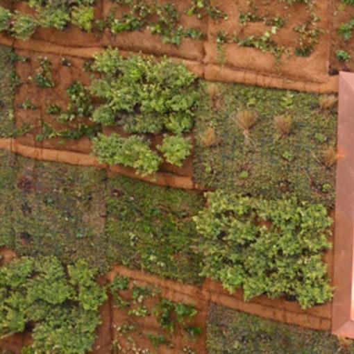 primo impianto di parete verde verticale su facciata con sistema modulare Perliwall