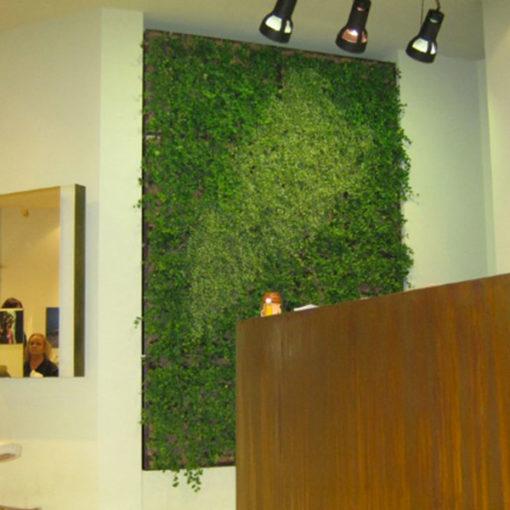 realizzazione di parete verde monofacciale interna con sistema Perliwall